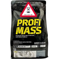 Olimp Profi Mass (1000 g)