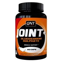 QNT Joint + (60 Kaps)
