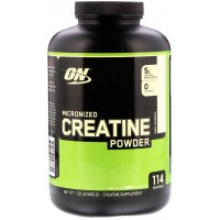 ON Creatine Powder (600 g)